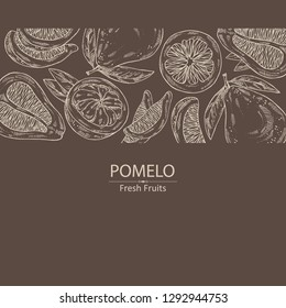 Background with  pomelo and pomelo slice. Vector hand drawn illustration