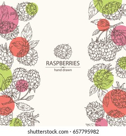 Background with a raspberry and branch of raspberry. Vector hand drawn illustration