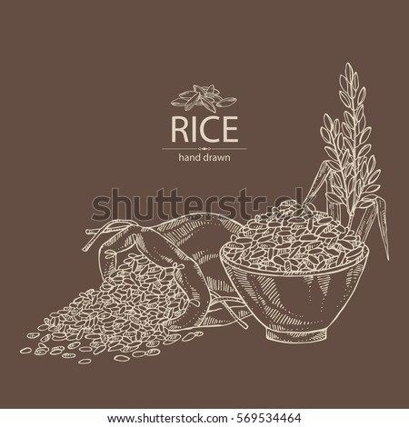 background rice bag rice plate rice のベクター画像素材