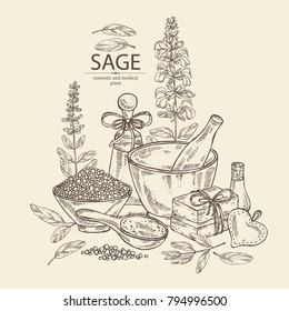 Background with sage, branch of sage, leaves and flowers. Essential oil, mortar, pestle, soap and bath salt . Cosmetic, perfumery and medical plant. Vector hand drawn illustration.