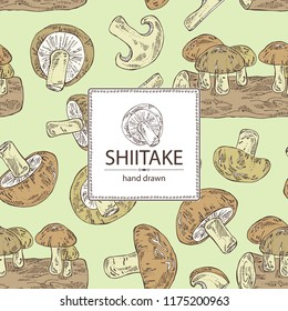 Background with shiitake: mushroom and a bit of shiitake. Mushroom. Vector hand drawn illustration