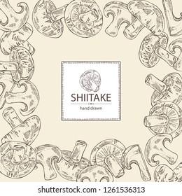 Background with shiitake: mushroom and a bit of shiitake. Mushroom. Vector hand drawn illustration.