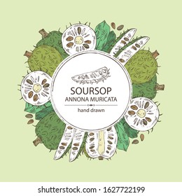 Background with soursop: fruit and soursop slice. Annona muricata. Vector hand drawn illustration.