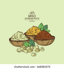 Background with soybean paste, miso and soya beans. Vector hand drawn illustration.
