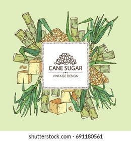 Background with sugarcane: cane sugar and sugarcane. Vector hand drawn illustration.
