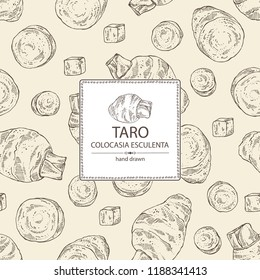 Background with taro: taro root, leaves and taro slice. Colocasia esculenta. Vector hand drawn illustration.