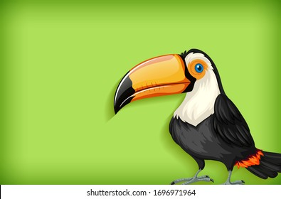 Background template with plain color and toucan bird illustration