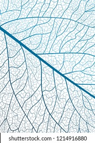 Background texture leaf. Vector illustration.