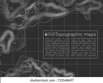Background of the topographic map. Topographic map lines, contour background. Geographic grid, vector abstract.
