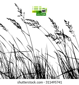 Background Tracing grass. Vector