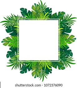 background with tropical leaves