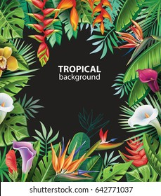 Background with tropical plants and flowers