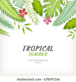 background tropical summer with palm branches exotic leaves and flowers hibiscus plumeria