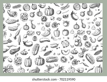 Background with Vegetables.Templates for label design with hand drawn linear vegetables. Can be used for vegan products, brochures, banner, restaurant menu, farmers market and organic food store
