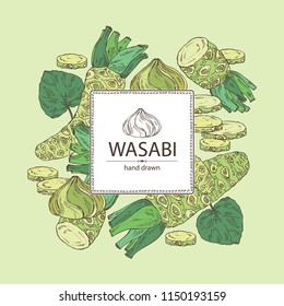 Background with wasabi: root, leaves and a piece of wasabi root. Vector hand drawn illustration.