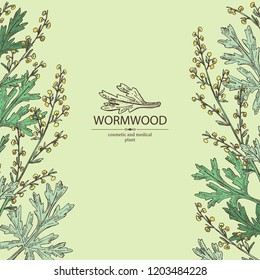 Background with wormwood: wormwood branch, wormwood flowers and leaves . Cosmetics and medical plant. Vector hand drawn illustration.