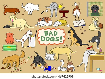 bad dogs set