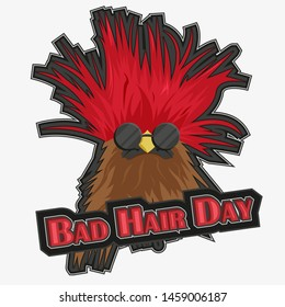 Bad hair day, bird with sun glasses and exploding feathers