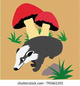 Badger with mushrooms
