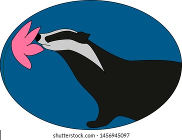 Badger smelling flower, illustration, vector on white background.