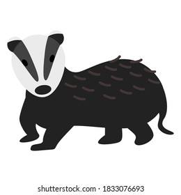 Badger vector illustration in flat style with black and white color