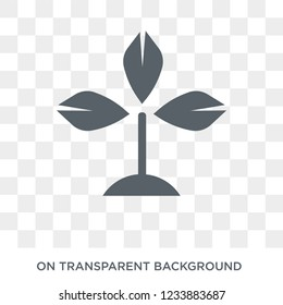 Bael tree icon. Trendy flat vector Bael tree icon on transparent background from india collection.
