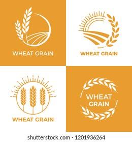Baked wheat logo. Field wheats grain label, bake elements. Food baking insignia harvest barley logo, grain wheat field bread bakery food awards vintage vector illustration set