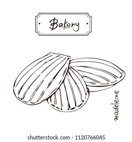 Bakery products hand drawing Madeleine