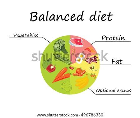 balanced diet のベクター画像素材 ロイヤリティフリー 496786330
