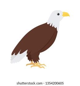 Bald eagle, cute bird. Isolated vector illustration