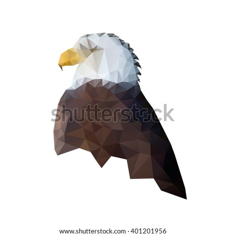 bald eagle drawing lowpoly style american stock vector royalty free