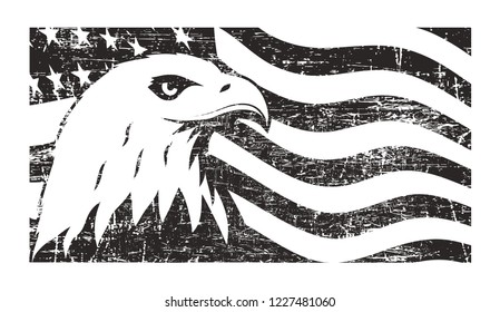 Bald eagle symbol of North America on grunge background with USA