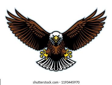 bald eagle wings open