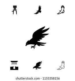 Bald icon. collection of 7 bald filled and outline icons such as eagle. editable bald icons for web and mobile.