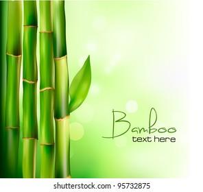 Bamboo background. Vector illustration.
