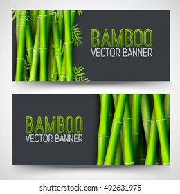 Bamboo banners concept. intage art traditional, Islam, arabic, indian, magazine, elements. Vector decorative retro greeting card or invitation layout design