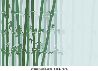 Bamboo forest background. Vector image