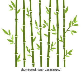 Bamboo forest set. Nature Japan, China. Plant Green tree with leaves. Rainforest in Asia.