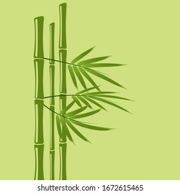 Bamboo Tree Images Stock Photos Vectors Shutterstock