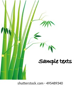 Bamboo is a plant with a long stem. Designed with space to write a message,vector illustration