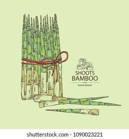 Bamboo shoots: young bamboo shoot and piece of shoot. Vector hand drawn illustration.
