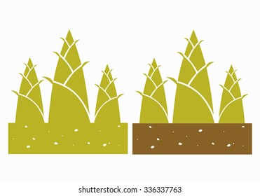 bamboo shoots,vector illustration