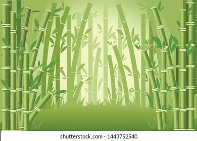 Bamboo trees asian forest landscape flat vector illustration