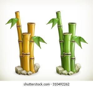 Bamboo, vector icon