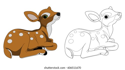 Bamby, fawn, coloring