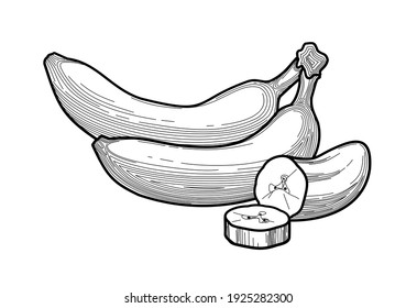 Banana - black and white vector illustration of thin lines. bananas - a stylized drawing of fruit in a flat style. healthy eating. concept - packaging design, food design. vitamins