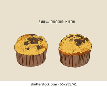 Banana Chocolate Chip Muffins Stock Illustrations Images Vectors Shutterstock