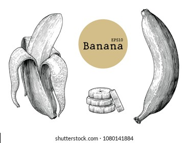 Banana collection sets hand drawing vintage engraving illustration