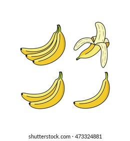 Banana Collection Vector Icon