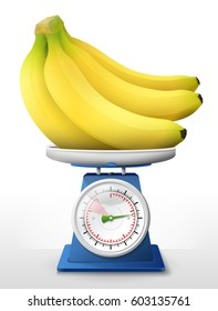 Banana fruit on scale pan. Weighing bunch of bananas on scales. Vector illustration
